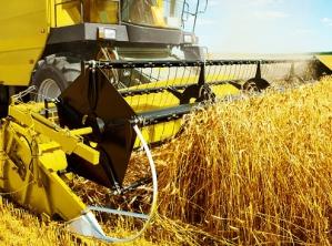 Ulgi, dopłaty, zwolnienia: Kiedy rolnik dostanie rentę z KRUS-u?
