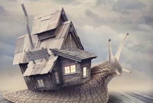Czym różni się bank hipoteczny od zwykłego banku?