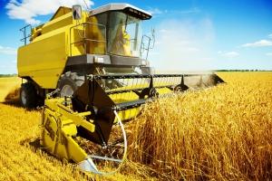 Rząd ograniczy obrót gruntami rolnymi?